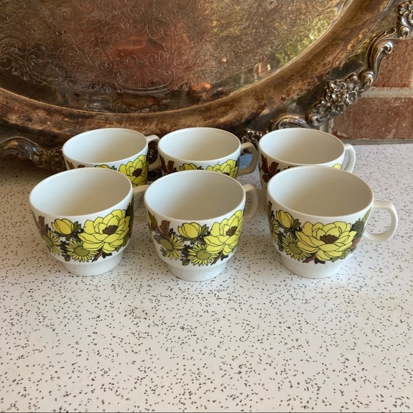 (6) VTG Flower Power Teacups